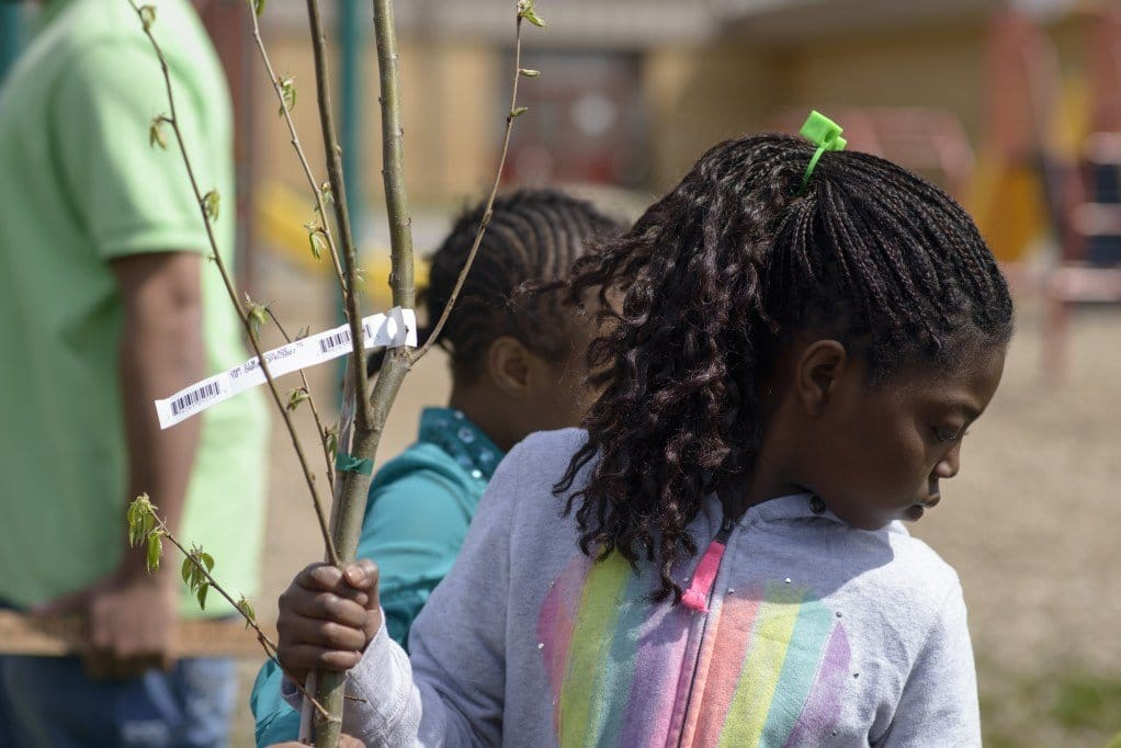 District Heights, Maryland - April 25, 2014: Longfield Elementary School planted trees with the help of Neighborhood Design Center for their Arbor Day celebration. CREDIT: Matt Roth