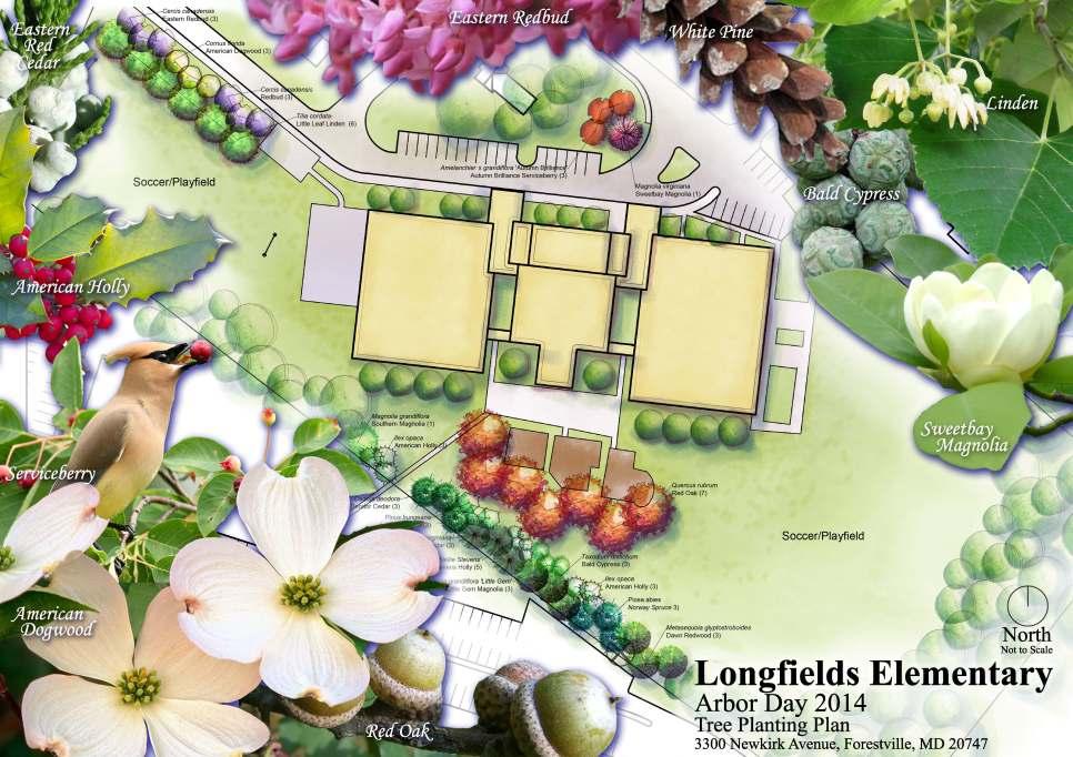 design-board-longfields-elementary